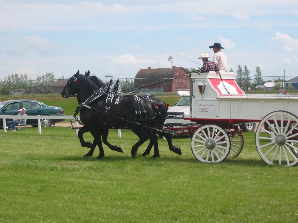 Killarney Agricultural Society